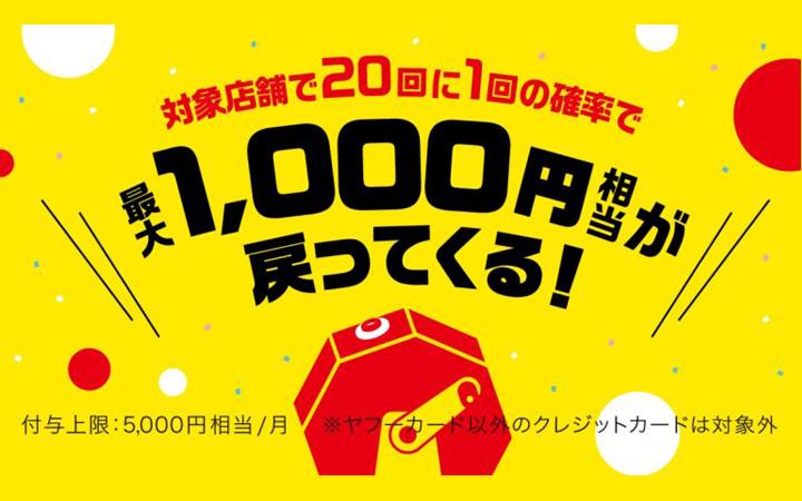 キャッシュレス5%還元対象店舗 paypayは3/31まで 最大1,000円戻るキャンペーン